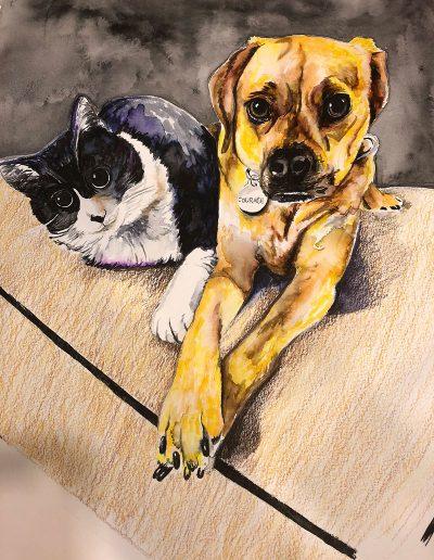 catanddogweb