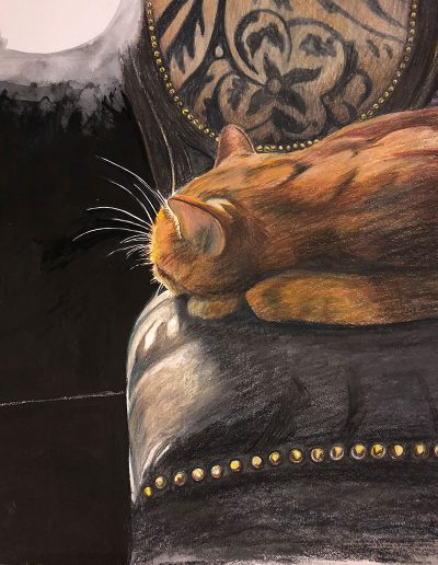sleepycat_web